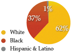 graph of racial breakdown